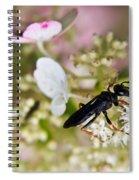 Black Wasp 1 Spiral Notebook