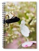 Black Wasp 2 Spiral Notebook