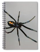 Black Widow Spiral Notebook