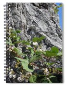 Blackberry On The Rock 04 Spiral Notebook