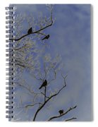 Blackbirds Spiral Notebook