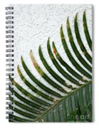 Bladed Leaf Against Stucco Wall Spiral Notebook