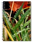 Blades Of Dew Spiral Notebook