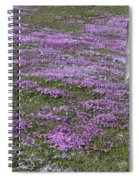 Blank Colonial Tombstone Amidst Graveyard Phlox Spiral Notebook