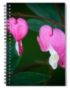 Bleeding Hearts 002 Spiral Notebook