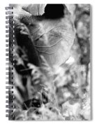 Blending Into Camouflage Spiral Notebook