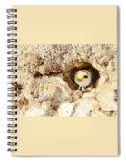 Blenny Spiral Notebook