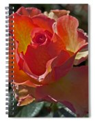 Blessings Spiral Notebook