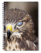 Blind Buzzard Spiral Notebook