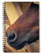 Blind Prisoner Spiral Notebook