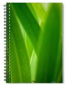Blinding Green Spiral Notebook