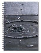 Blink II Spiral Notebook