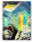 Bliss And Beyond Spiral Notebook