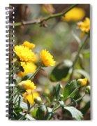 Blomming Merigolds Spiral Notebook