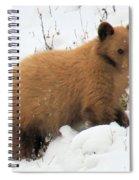 Blondie Spiral Notebook