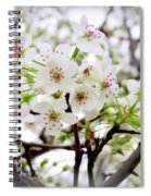 Blooming Ornamental Tree Spiral Notebook