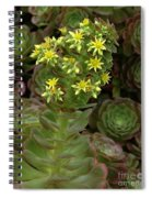 Blooming Succulents Spiral Notebook