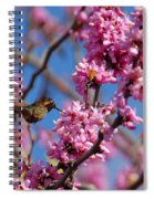 Blossoming Bird Spiral Notebook