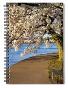 Blossoming Cherry Trees Spiral Notebook