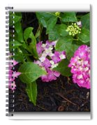 Blossoms And Rain Drops Spiral Notebook