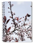 Blossoms In Time Spiral Notebook