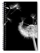 Blown Away Spiral Notebook