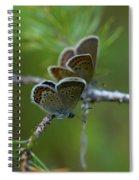 Blue 2 Together Spiral Notebook