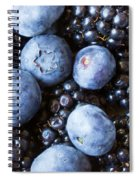Blue And Black Berries Spiral Notebook