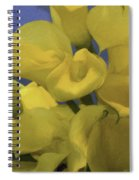 Blue And Yellow Spiral Notebook