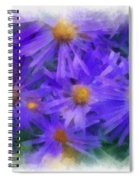 Blue Asters - Watercolor Spiral Notebook