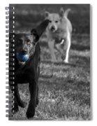 Blue Ball Spiral Notebook