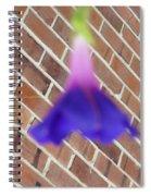 Blue Ballerina Spiral Notebook