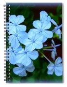 Blue Blossoms Spiral Notebook