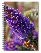 Blue Brush Bloom Spiral Notebook