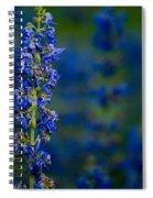 Blue Bunny Spiral Notebook