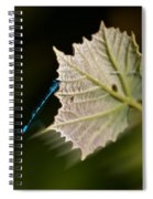 Blue Damsel On Leaf Spiral Notebook