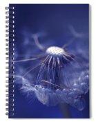 Blue Dandy Spiral Notebook