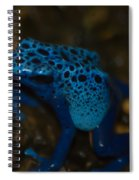 Blue Dart Frog Spiral Notebook