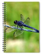 Blue Dragonfly On Barb Wire Spiral Notebook