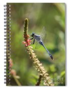Blue Dragonfly On Pink Flower Spiral Notebook