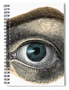 Blue Eye Spiral Notebook
