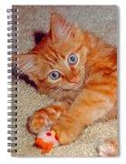Blue-eyed Kitty Spiral Notebook