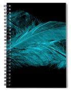 Blue Ghost On Black Spiral Notebook