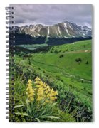Blue Grouse Pass, Willmore Wilderness Spiral Notebook