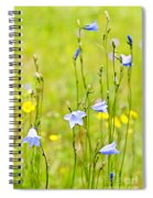 Blue Harebells Wildflowers Spiral Notebook
