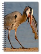Blue Heron Vs. Rainbow Trout Spiral Notebook