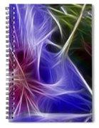 Blue Hibiscus Fractal Panel 1 Spiral Notebook