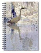 Blue Inverted Spiral Notebook