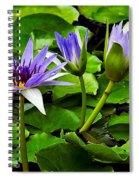 Blue Lilies Spiral Notebook