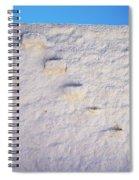 Blue Line Spiral Notebook
